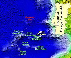 Montes Submarinos